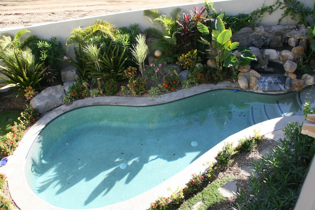 Private pool with waterfall feature in our backyard