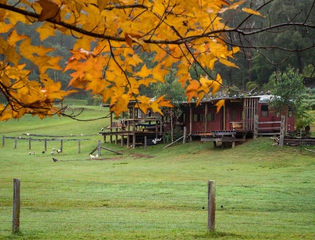 Farmstay: Rustic Train Carriage - Alpaca farm