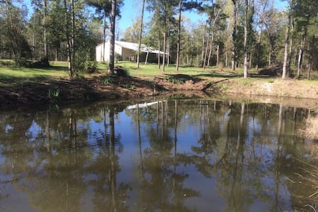 Cabin on 3 acres near Lake Conroe - Kisház