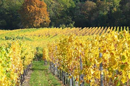 Appart 3p sur la route des vins, proximité Vosges - Mutzig - Wohnung