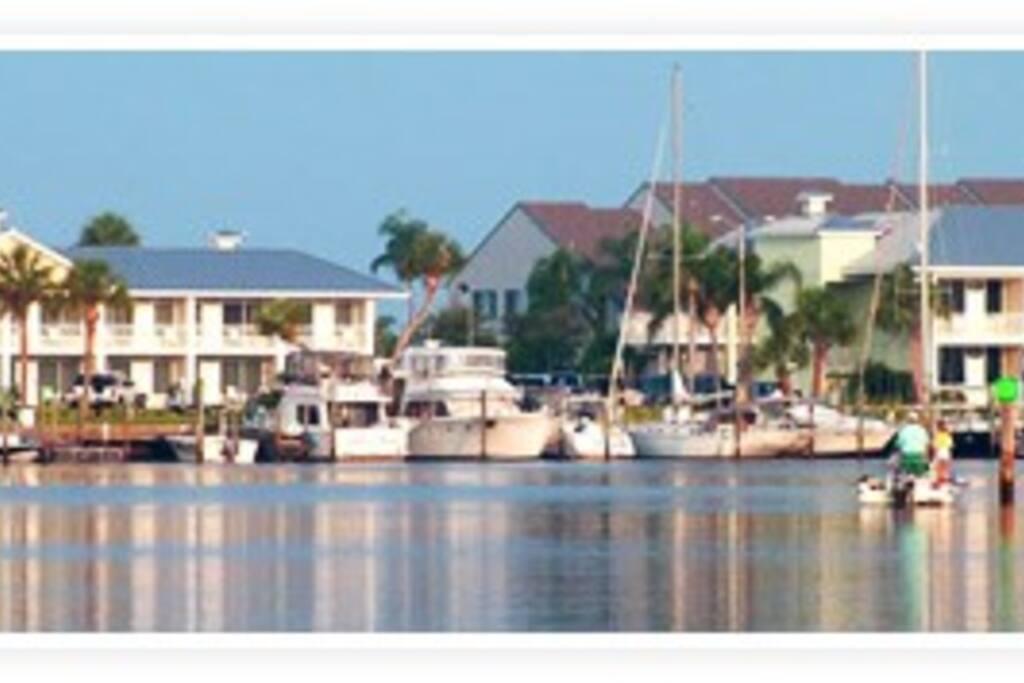 Bahiabeach Resort Studio Tampa Fl Apartments For Rent