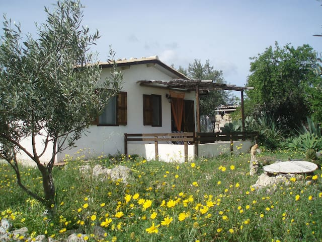 Home among the almond trees - Noto - Dům