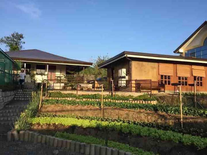Aozora Japanese Resto+FREE Breakfast+Bed+Garden