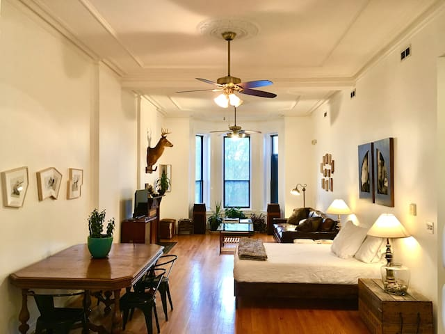 OHC Gorgeous Huge Studio Apt Steps to Blue Line