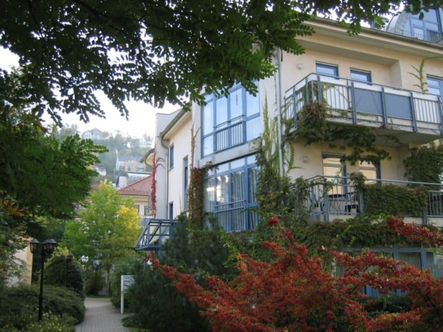 separate wohnung direkt an der elbpromenade wohnungen zur miete in dresden sachsen deutschland. Black Bedroom Furniture Sets. Home Design Ideas