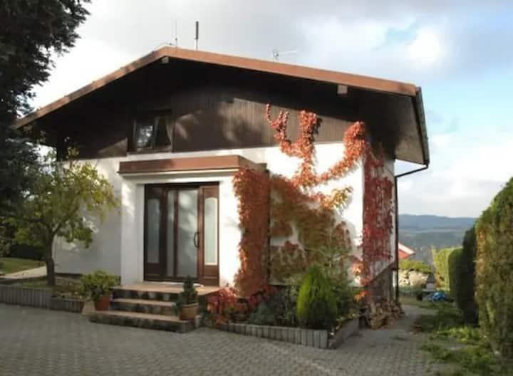 House with sauna near Prague by lake!