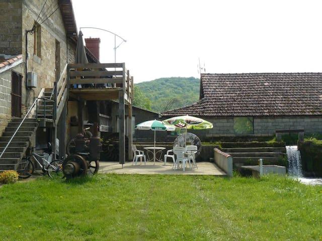 Gite au moulin canal de pêche - Lespielle - Wohnung