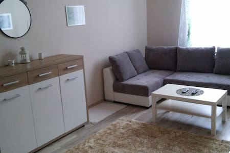 Comfortable apartment in the city center - Apartment