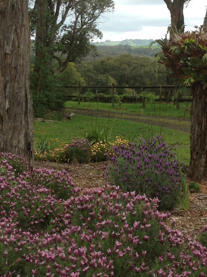 A Peaceful Country Retreat - Yarra Ranges