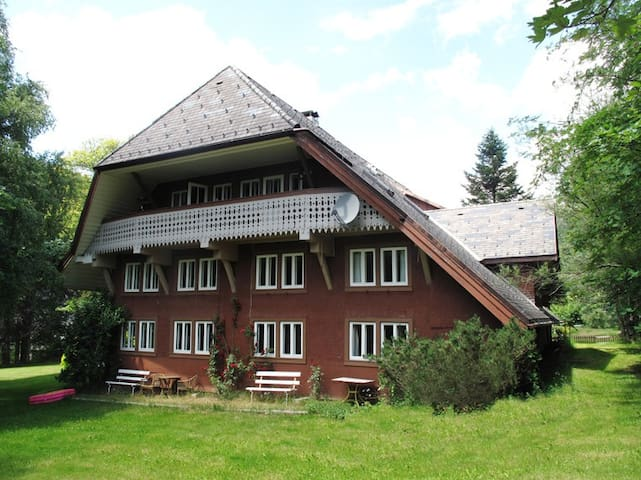 Urlaub im Schwarzwald - Sankt Blasien - Apartamento