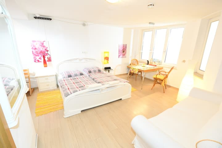 Quiet room, own bath + entrance, 20 min to center