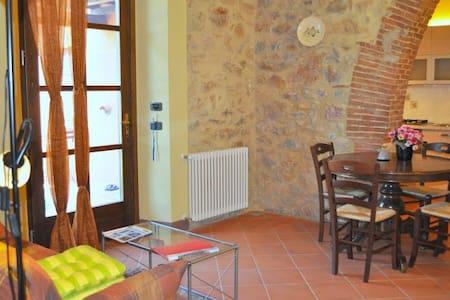 Apartment in vineyards, pool & sea - Massa Marittima