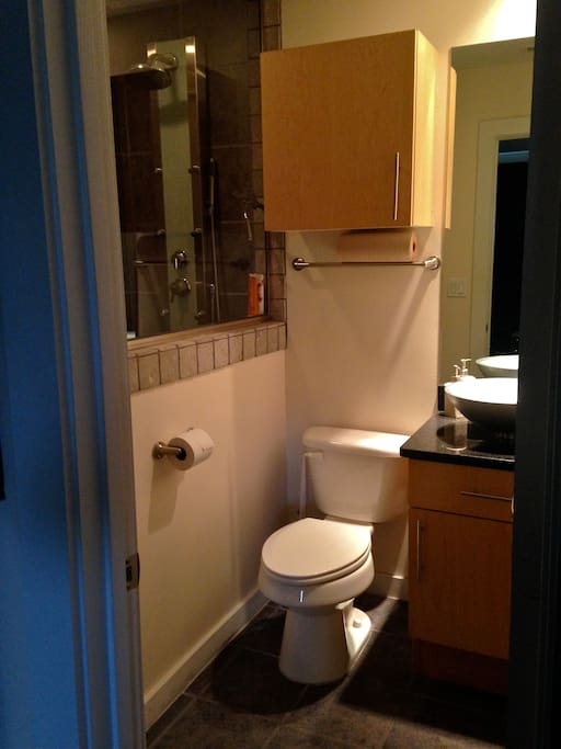 Your bathroom, with contemporary, walk-in shower.
