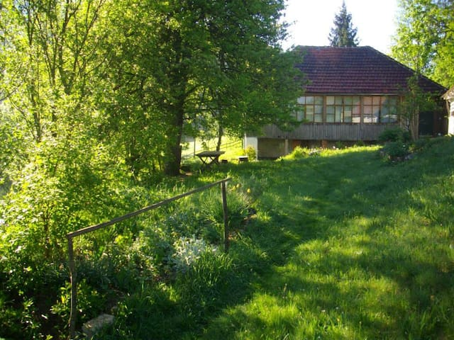 CASA ELSA - BACK TO NATURE