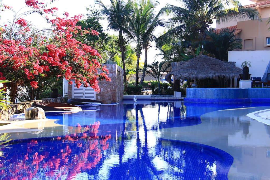 Gorgeous Pool to Relax
