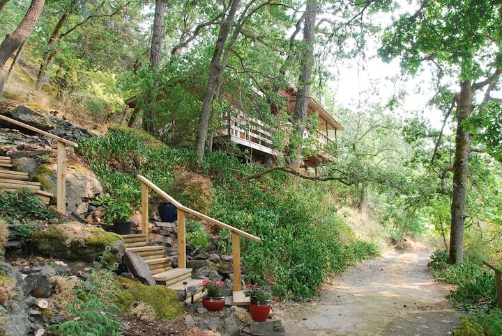 Frog Mountain Treehouse