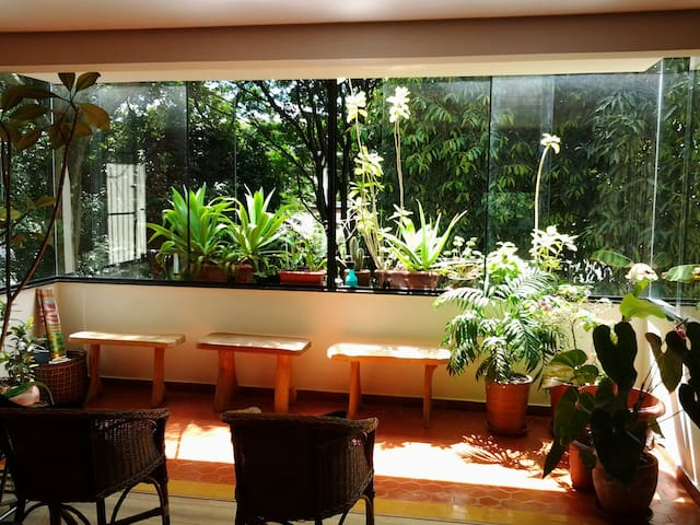 Brasilia: tranquility, praticity