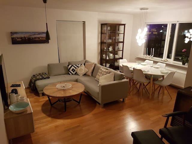 Neat apartment at the center of Reykjavík - Reikiavik - Apartamento