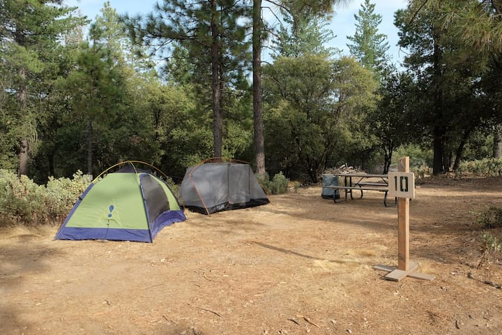 Wilderness Tent Camping 24Mi from Yosemite #10