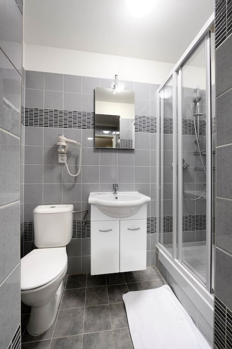 Bathroom provides shower and toilet.