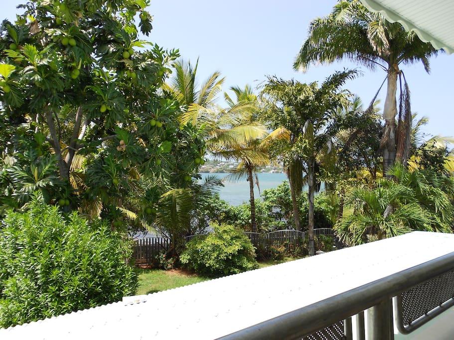 Vue de haut le jardin livre son secret ... : la mer à environ 10 mètre du logement