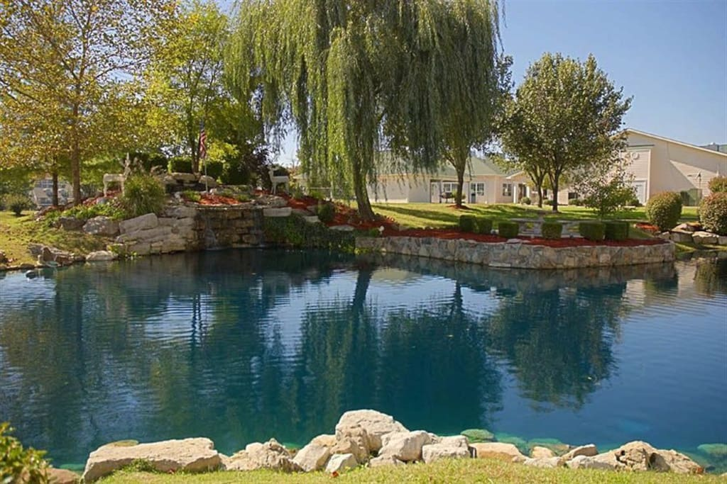 Surrounded by lakes, The Ozark Mountains & MORE!