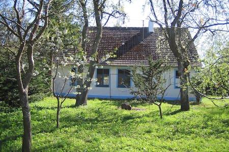 Historisches Bauernhaus mit Garten - Sasino