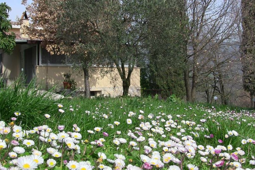 Country House Villa Pietro Romano: The Easter is arrived!