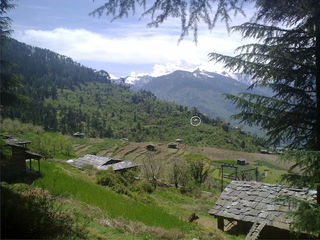 cozy single modern house at forest  - Manali - Ev
