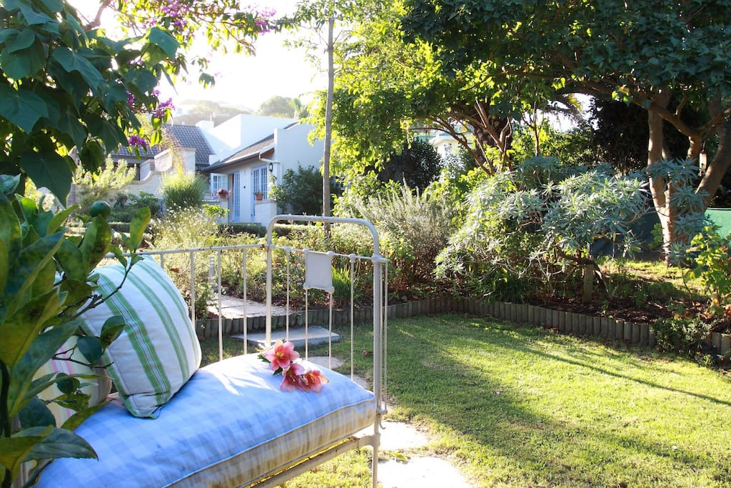Peaceful garden to relax and unwind