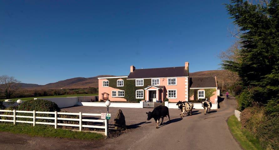 Murphy's farmhouse Bed & Breakfast Double room