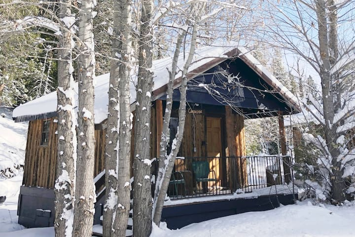 CREEKSIDE - MODERN CABIN AT CANYON RANCH RESORT