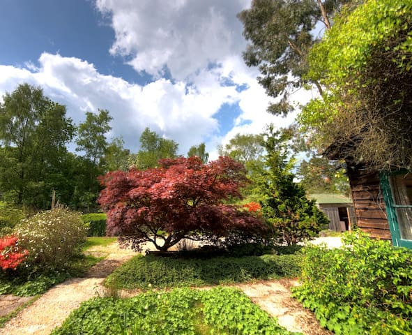 Vine Cottage in the New Forest - Sleeps up to 14 - Brockenhurst - Dům