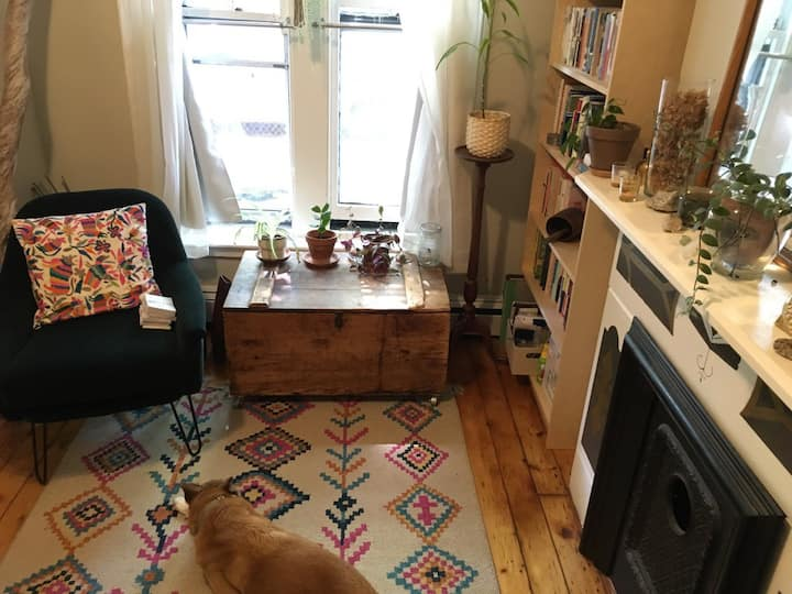 Bright Row House with Garden by Prospect Park