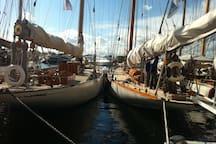 les voiles de St Tropez (fin septembre)