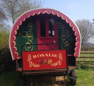 """""""Rosalie"""" the gypsy caravan.... - North Yorkshire"""