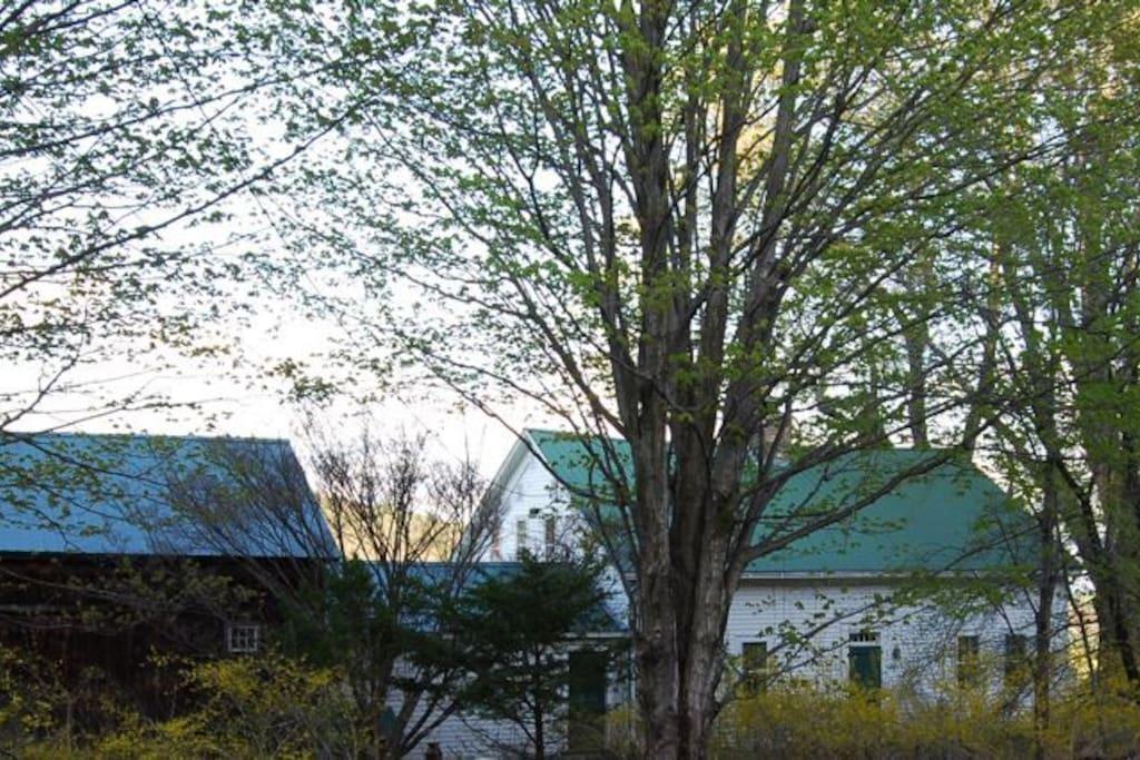 Western Facade of Flower Hill Farm Retreat