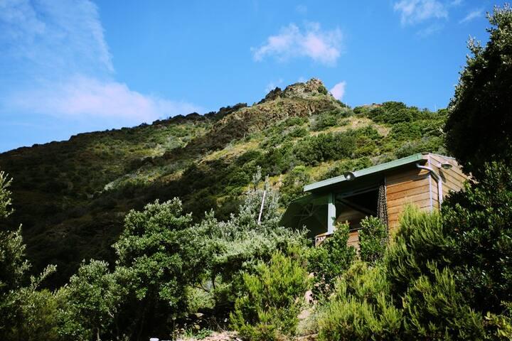 Cabane dans le maquis, terrasse vu sur mer