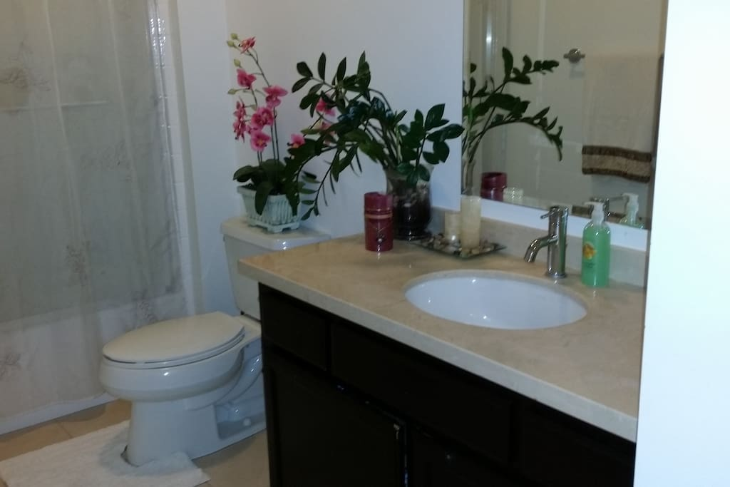 Your private bathroom  :)