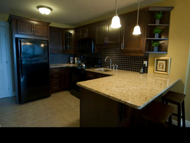 Upscale condo by Dal and Hospitals - Halifax - Apartment