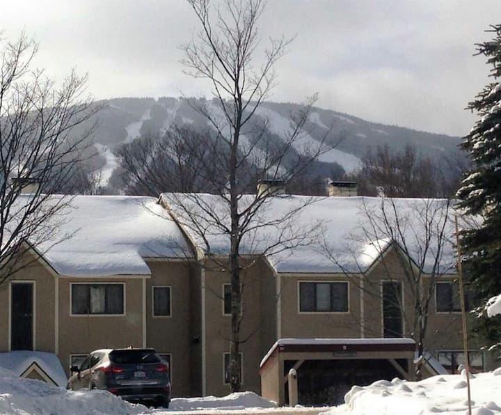 Stratton Mountain vacation spot