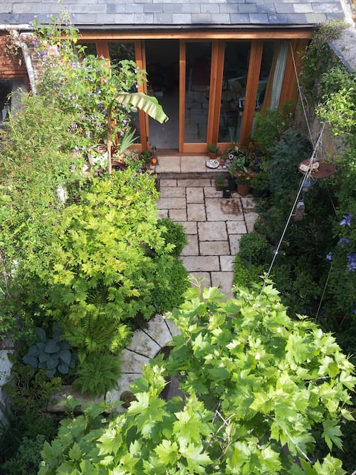 Penarth House - Back Yard