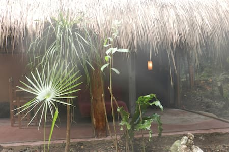 organic yoga Ecohotel eat healthy!! - Akumal
