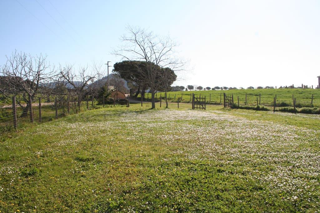 Der Garten von Casa Margherita