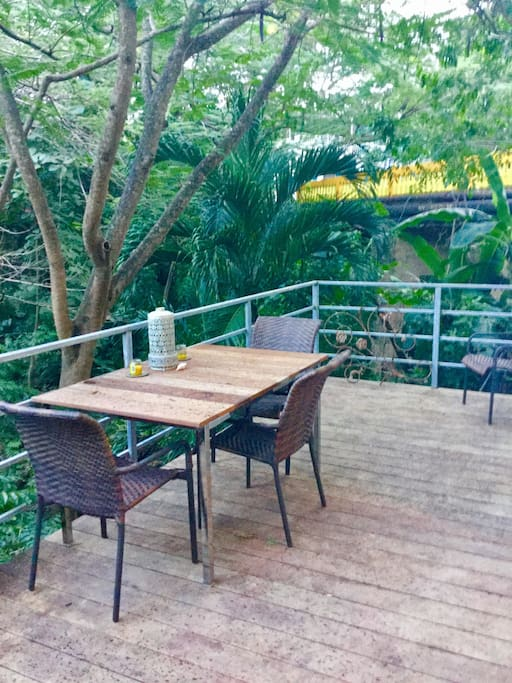 Private Deck overlooking Arroyo with Iguanas, sounds of Waterfall and nighttime songs of Coqui Frogs!