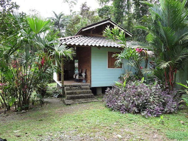 Jungle Cottage - Casa Rameen - Cocles - Haus