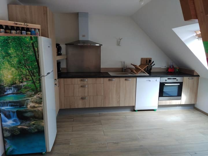appartement vallée d'Ossau Louvie-juzon