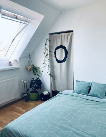 The room with two big windows