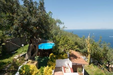Villa Felice, Panoramica e nuova - マッサ・ルブレンセ
