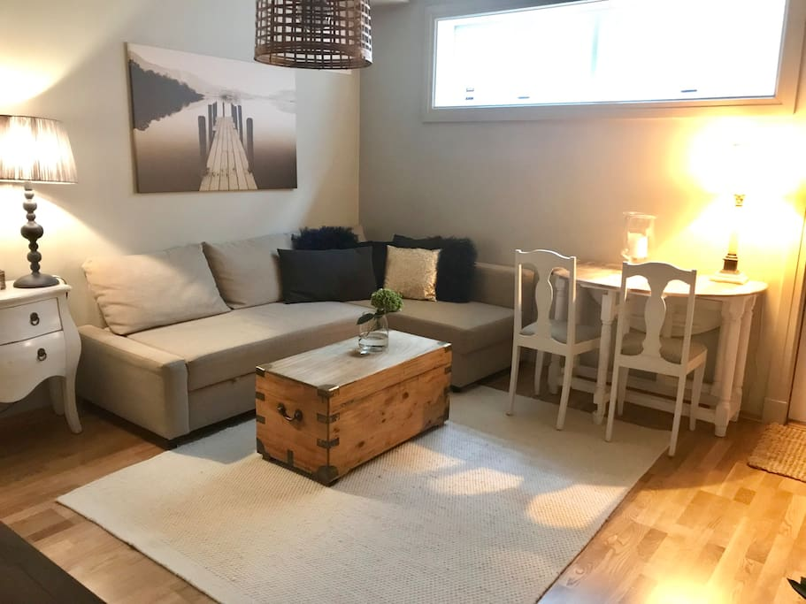 Living room with sofa / Sofa bed (140 cm width)